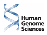 Visit the Human Genome Sciences website